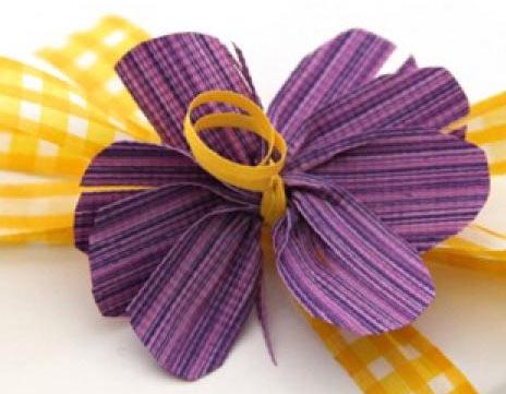 cream-city-ribbon-website-category-banner2.jpg